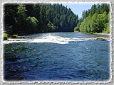 A photograph of a small set of rapids on the Willamette.