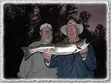 Bill & Dave with a 7lb. Steelhead caught on a dry fly on the McKenzie on Aug. 6, 2003.